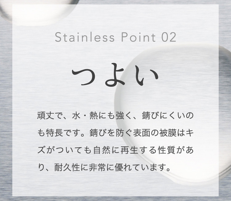 Stainless Point 02 つよい