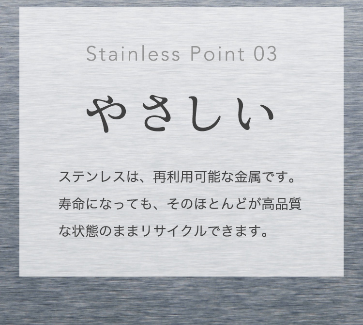 Stainless Point 03 やさしい